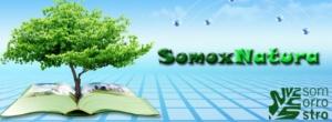 cabecera blog somoxnatura